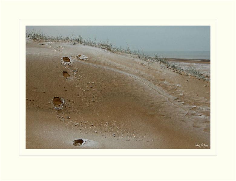 sporen.... - Dezelfde ochtend geschoten als de vorige twee uploads. De grijze lucht in combinatie met het berijpte strand geeft een bijzondere sfeer.<