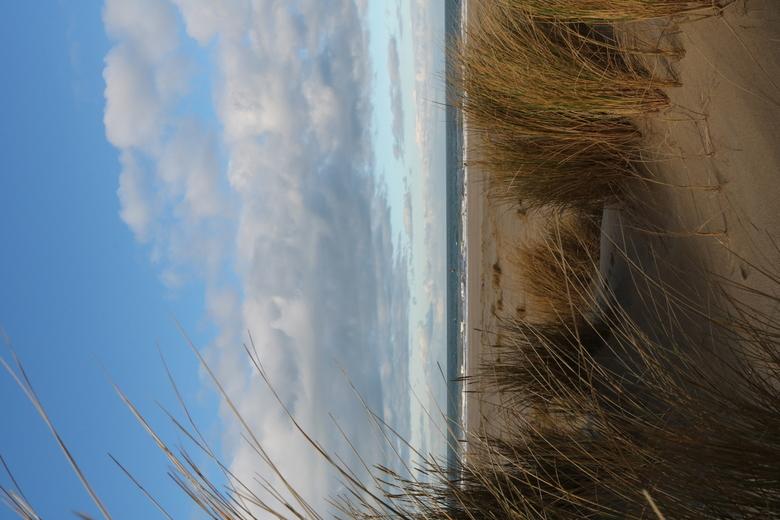 de duinen -