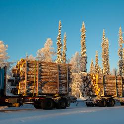 Finland, houttransport
