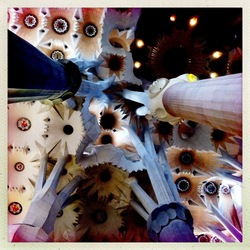 Barcelona: Plafond in de Sagrada Familia