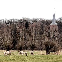 Doorkijk Diepenheim in de Hof van Twente