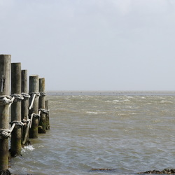 Waddenzee vanaf 't Kuitje gezien
