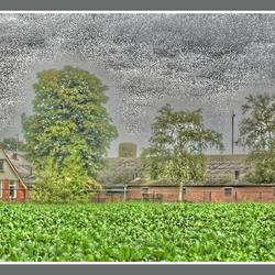 HDR (probeersel) foto boerderij in Beilen