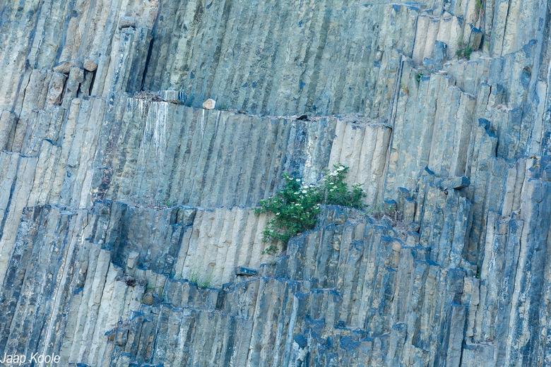 Basaltgroeve