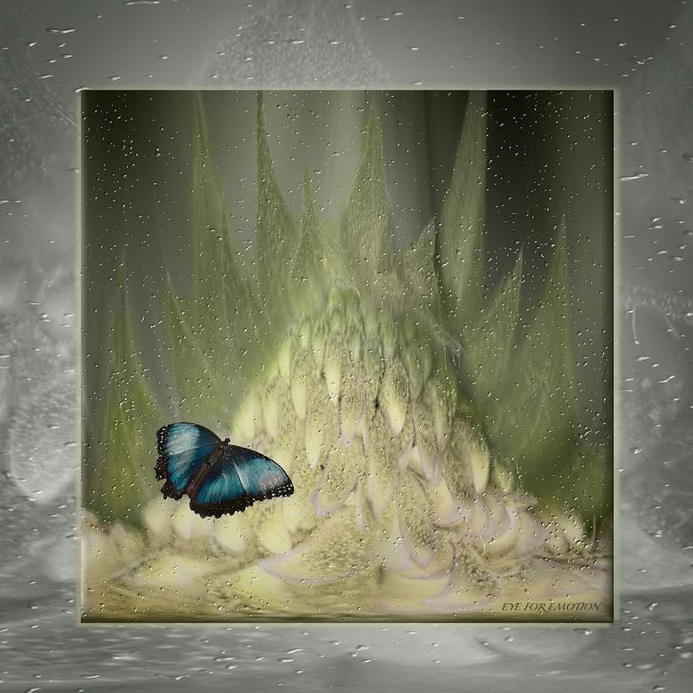 Verdwaalde vlinder... - Donker weer, en wat tijd over vandaag, dus maar aan het knutselen geslagen..een winters plaatje deze keer, ik moet toch een be