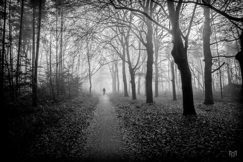 Eenzame fietser - Eenzame fietser in de bossen op zondag 1 december 2019