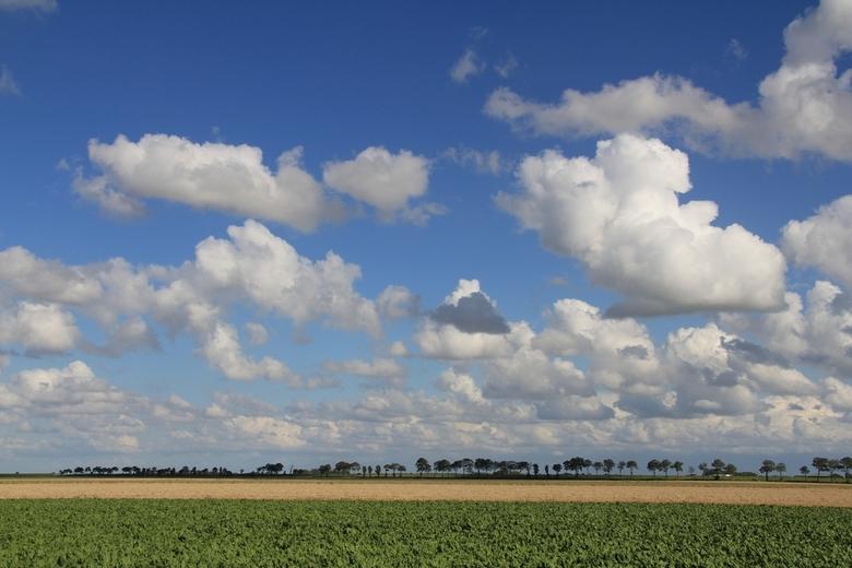 Noord-Groningen - Fietsen in Noord-Groningen, altijd wind tegen.
