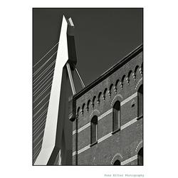 De Zwaan /Erasmusbrug