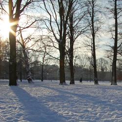 Winters Vondelpark
