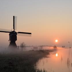 Op een mistige morgen in de Alblasserwaard.