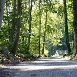weg richting Chateau Neercanne