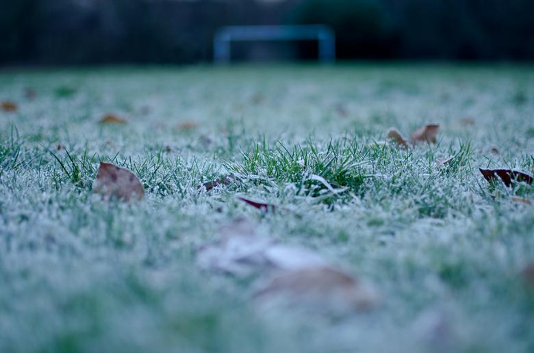 winterstop - De ongebruikte grasmat tijdens de winterstop.
