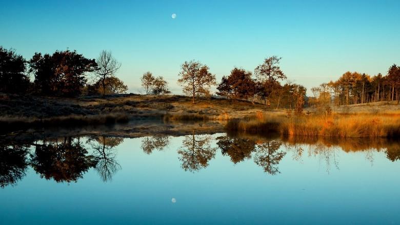 Reflections - Vroeg in de morgen weerspiegelt de maan in het ven..