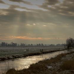 Nederlandse Wildernis (Kampen)