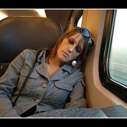 Tukkie in de trein