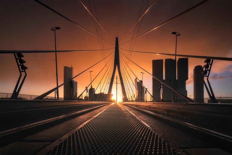 Sunstruck - Na een lange periode van grijze luchten was het gisterenochtend (zondag) eindelijk zo ver... De zon liet zich weer eventjes zien!! Dit is