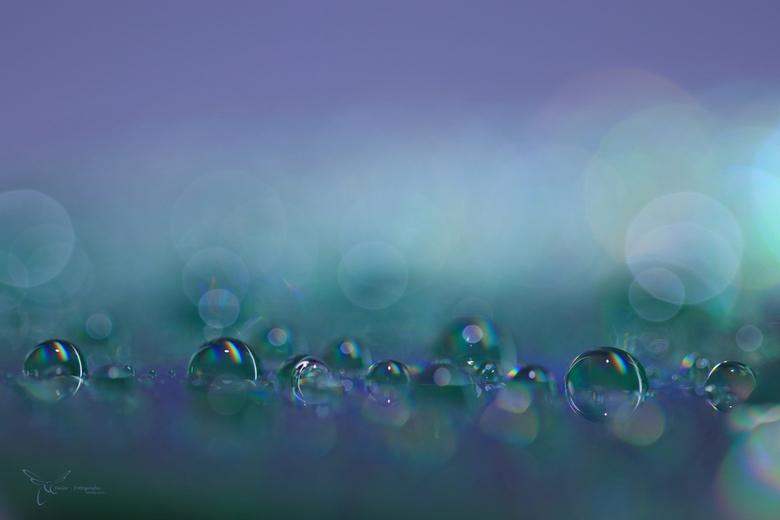 H2O on CD - Spelen met waterdruppels op een cd.