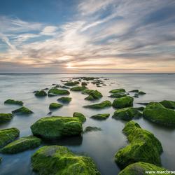 Katwijk aan Zee (II)
