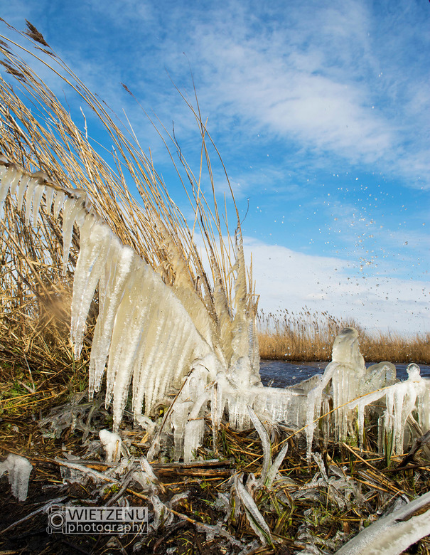 Icecold -