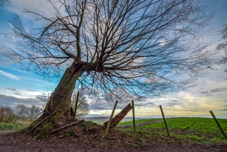 It's a beautiful day - Een winterdag met uitzicht op heuvel landschap van Limburg. Foto bestaat uit 3 foto's welke samengevoegd zijn met de plugi