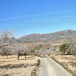 Pano Spaans landschap....