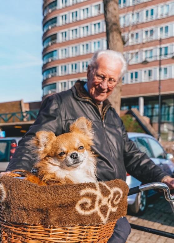 """Sunshine Dog - Een echte feel good capture! Ik zag deze leuke hond genieten van de zon en vroeg zijn baasje of ik een foto mocht nemen, """"uiteraar"""