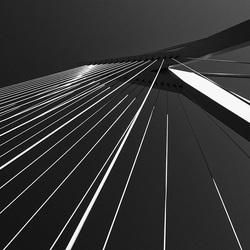 Rotterdam 02