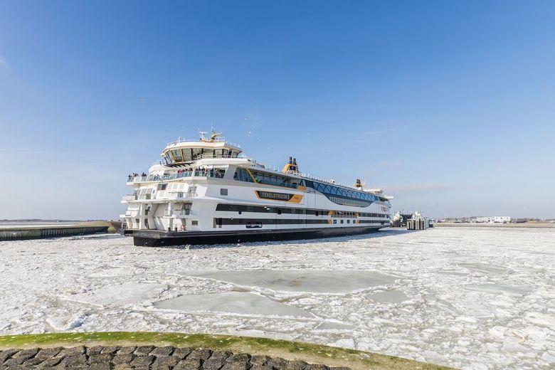 Texels trots, trotseert de ijsschotsen