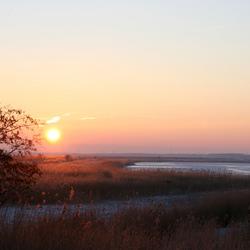 Zonsopgang Oostvaardersdijk