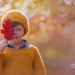 Autumn leaf...