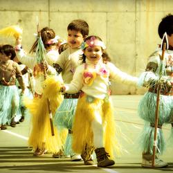 Mallorcaans carnaval