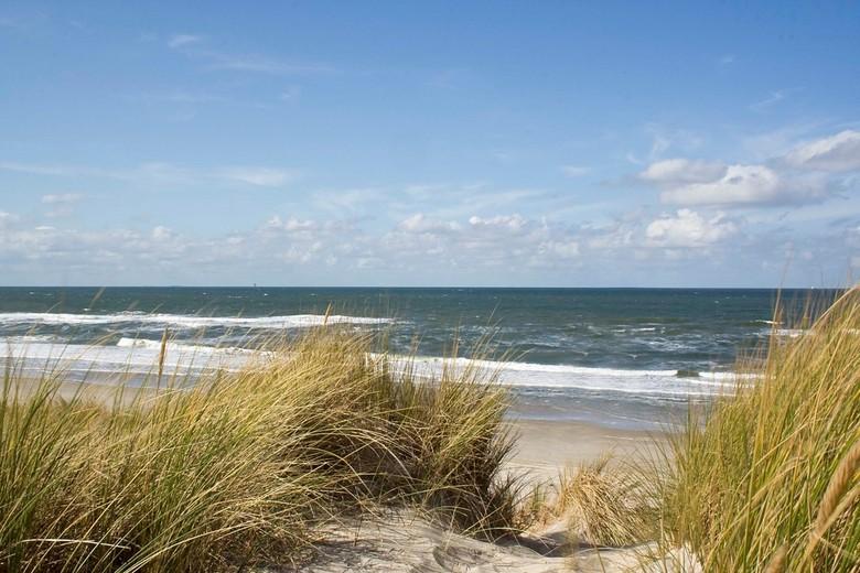 Duinen Texel, Noordzeekant - Wat is er mooier dan zicht op Zee vanaf de duinen. Een heldere blauwe lucht boven zee, het strand en het vergezicht over