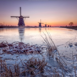 Winter Kinderdijk