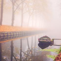 Herfst & Mist II