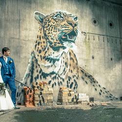 Liefde en grafitti