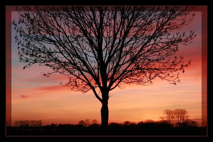 Warme kleuren om koud van te krijgen landschap foto van ericavf