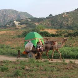 India, nomaden