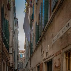 Calle Zane