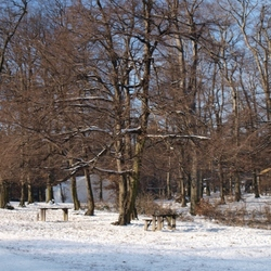 winter op koliba Slowakije