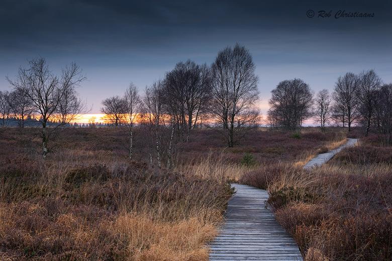 Follow the Path - Vorig jaar November weer een bezoekje gebracht aan de Hoge Venen / Hautes Fagnes in België. Deze keer weer in het gebied het Brackve