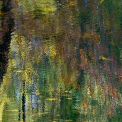 Monet ?