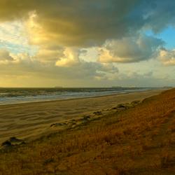 Strand Maasvlakte 2