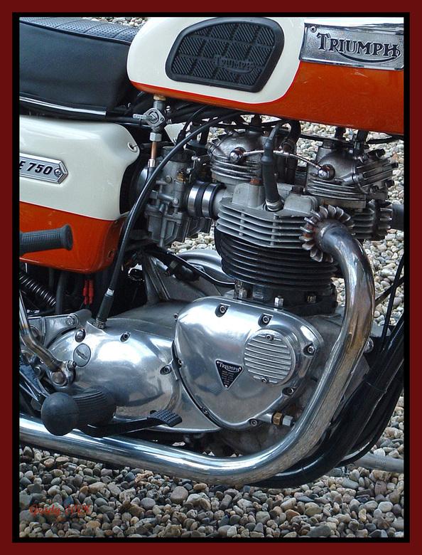 Triumph Bonneville 750 -