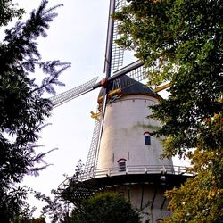 De Hoop te Middelburg