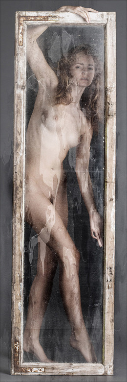 holding a window - Evelyn Sommer