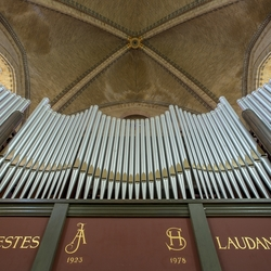 Sint Bavo Basiliek 16