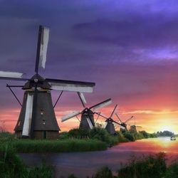 Dreamy Kinderdijk
