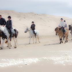 paardrijden in de Haan aan zee