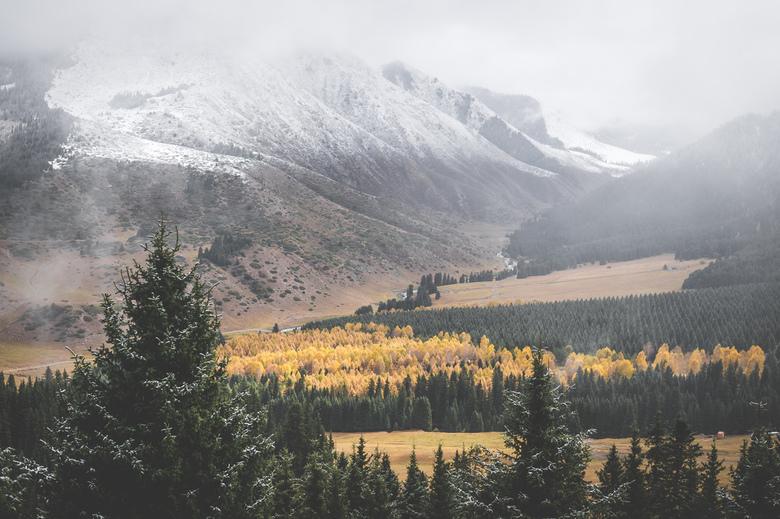 Kyrgyz tones. - Een beetje onverwacht, maar prachtige herfstkleuren in combinatie met de winter in Kirgistan.<br /> <br /> Volg me gerust op:<br />