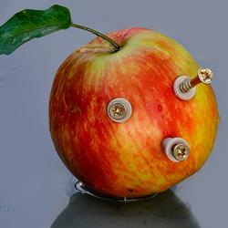 Apple plug ins
